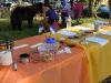 10-15-2011-serbian-food-festival-052